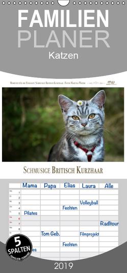 Schmusige Britisch Kurzhaar – Familienplaner hoch (Wandkalender 2019 , 21 cm x 45 cm, hoch) von Wrede,  Martina