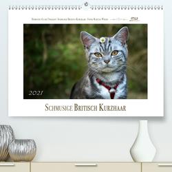 Schmusige Britisch Kurzhaar (Premium, hochwertiger DIN A2 Wandkalender 2021, Kunstdruck in Hochglanz) von Wrede,  Martina