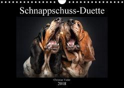 Schnappschuss-Duette (Wandkalender 2018 DIN A4 quer) von Photography / Christian Vieler,  Vieler
