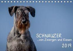 Schnauzer… von Zwergen und Riesen 2019 (Tischkalender 2019 DIN A5 quer) von Janz,  Michael