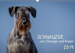 Schnauzer… von Zwergen und Riesen 2019 (Wandkalender 2019 DIN A3 quer) von Janz,  Michael