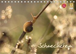 Schneckchen (Tischkalender 2019 DIN A5 quer)
