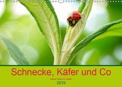 Schnecke, Käfer und Co (Wandkalender 2019 DIN A3 quer) von Kunz,  Ilse
