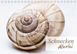 Schnecken Allerlei (Tischkalender 2019 DIN A5 quer)