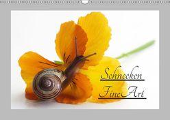 Schnecken FineArt (Wandkalender 2019 DIN A3 quer)