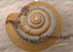 Schnecken (Wandkalender 2019 DIN A3 quer) von LoRo-Artwork