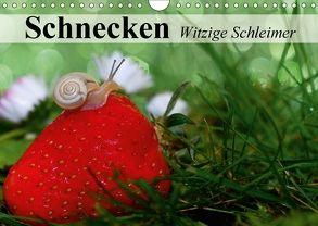 Schnecken. Witzige Schleimer (Wandkalender 2018 DIN A4 quer) von Stanzer,  Elisabeth