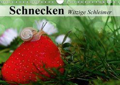 Schnecken. Witzige Schleimer (Wandkalender 2019 DIN A4 quer) von Stanzer,  Elisabeth
