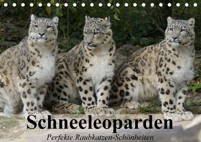 Schneeleoparden. Perfekte Raubkatzen-Schönheiten (Tischkalender 2018 DIN A5 quer) von Stanzer,  Elisabeth