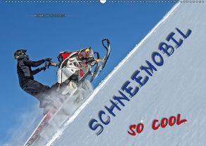Schneemobil – so cool (Wandkalender 2018 DIN A2 quer) von Roder,  Peter