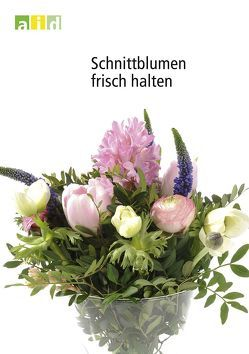 Schnittblumen frisch halten von Hass-Tschirschke,  Iris, Hendriks,  Ludger