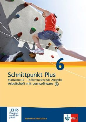 Schnittpunkt Plus Mathematik / Arbeitsheft mit Lösungsheft und Lernsoftware 6. Schuljahr
