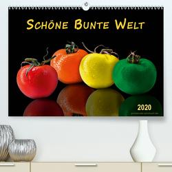 Schöne bunte Welt (Premium, hochwertiger DIN A2 Wandkalender 2020, Kunstdruck in Hochglanz) von Roder,  Peter