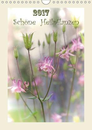 Schöne Heilpflanzen (Wandkalender 2018 DIN A4 hoch) von Ries,  Lidiya