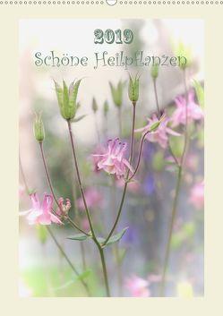 Schöne Heilpflanzen (Wandkalender 2019 DIN A2 hoch) von Ries,  Lidiya