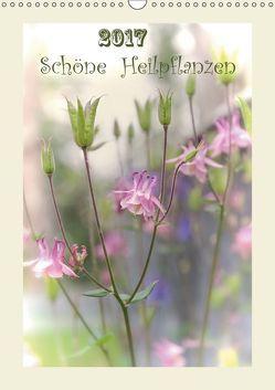 Schöne Heilpflanzen (Wandkalender 2019 DIN A3 hoch)
