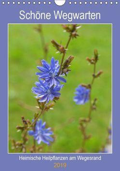 Schöne Wegwarten. Heimische Heilpflanzen am Wegesrand (Wandkalender 2019 DIN A4 hoch) von Wagner,  Hanna