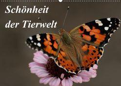 Schönheit der Tierwelt (Wandkalender 2018 DIN A2 quer) von Probstfeld,  Sandra