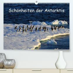 Schönheiten der Antarktis (Premium, hochwertiger DIN A2 Wandkalender 2020, Kunstdruck in Hochglanz) von FotografieKontor Bildschoen: Ute Löffler,  Utes