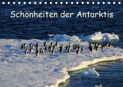 Schönheiten der Antarktis (Tischkalender 2018 DIN A5 quer) von FotografieKontor Bildschoen: Ute Löffler,  Utes