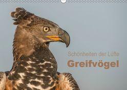 Schönheiten der Lüfte – Greifvögel (Wandkalender 2019 DIN A3 quer) von Brandt,  Tanja
