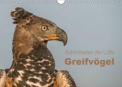 Schönheiten der Lüfte – Greifvögel (Wandkalender 2019 DIN A4 quer) von Brandt,  Tanja