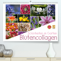 Schönheiten im Garten – Blütencollagen (Premium, hochwertiger DIN A2 Wandkalender 2021, Kunstdruck in Hochglanz) von Cross,  Martina