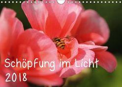 Schöpfung im Licht (Wandkalender 2018 DIN A4 quer) von Hildebrand,  Katrin