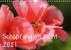 Schöpfung im Licht (Wandkalender 2021 DIN A4 quer) von Hildebrand,  Katrin