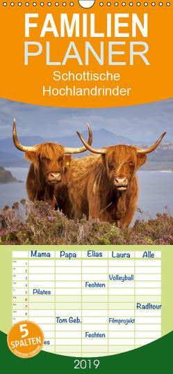 Schottische Hochlandrinder. Freundlich, schön und robust – Familienplaner hoch (Wandkalender 2019 , 21 cm x 45 cm, hoch) von Stanzer,  Elisabeth
