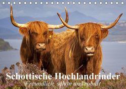 Schottische Hochlandrinder. Freundlich, schön und robust (Tischkalender 2018 DIN A5 quer) von Stanzer,  Elisabeth