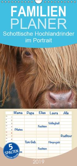 Schottische Hochlandrinder – Highland Cattle im Portrait – Familienplaner hoch (Wandkalender 2019 , 21 cm x 45 cm, hoch) von Cross,  Martina