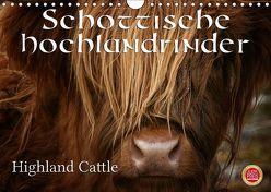 Schottische Hochlandrinder – Highland CattleAT-Version (Wandkalender 2019 DIN A4 quer) von Cross,  Martina