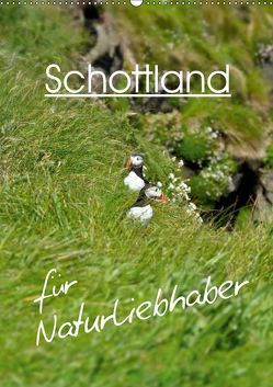 Schottland für Naturliebhaber (Wandkalender 2019 DIN A2 hoch) von Schaefer,  Anja