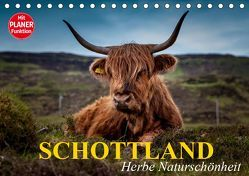 Schottland. Herbe Naturschönheit (Tischkalender 2019 DIN A5 quer) von Stanzer,  Elisabeth