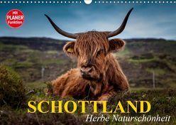 Schottland. Herbe Naturschönheit (Wandkalender 2019 DIN A3 quer) von Stanzer,  Elisabeth