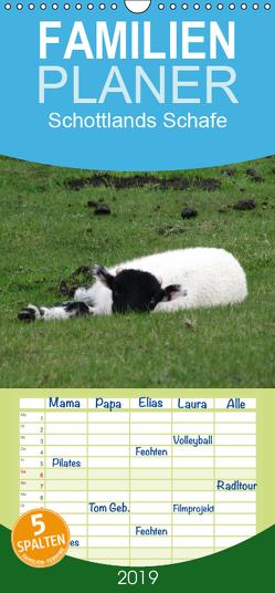 Schottlands Highland Schafe – Familienplaner hoch (Wandkalender 2019 , 21 cm x 45 cm, hoch) von ~bwd~