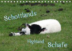 Schottlands Highland Schafe (Tischkalender 2019 DIN A5 quer)