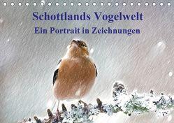 Schottlands Vogelwelt – Ein Porträt in Zeichnungen (Tischkalender 2019 DIN A5 quer) von Küster,  Friederike