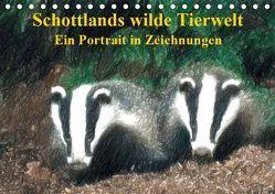 Schottlands wilde Tierwelt – Ein Porträt in Zeichnungen (Tischkalender 2019 DIN A5 quer) von Küster,  Friederike