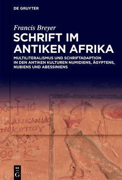 Schrift im antiken Afrika von Breyer,  Francis