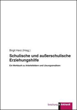 Schulische und außerschulische Erziehungshilfe von Herz,  Birgit