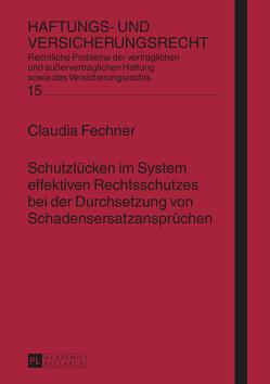 Schutzlücken im System effektiven Rechtsschutzes bei der Durchsetzung von Schadensersatzansprüchen von Fechner,  Claudia