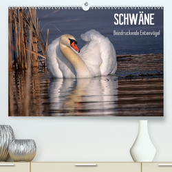 Schwäne – Beeindruckende Entenvögel (Premium, hochwertiger DIN A2 Wandkalender 2020, Kunstdruck in Hochglanz) von Erlwein,  Winfried