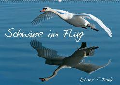 Schwäne im FlugCH-Version (Wandkalender 2019 DIN A2 quer) von T. Frank,  Roland