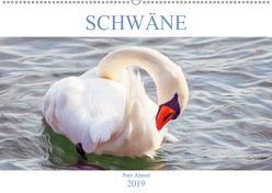 Schwäne – Pure Anmut (Wandkalender 2019 DIN A2 quer) von Brunner-Klaus,  Liselotte