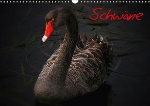 Schwäne (Wandkalender 2018 DIN A3 quer) von Stanzer,  Elisabeth