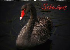 Schwäne (Wandkalender 2019 DIN A2 quer) von Stanzer,  Elisabeth