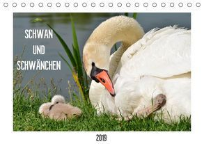 SCHWAN UND SCHWÄNCHEN (Tischkalender 2019 DIN A5 quer) von Gaudig,  Marlise