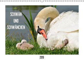 SCHWAN UND SCHWÄNCHEN (Wandkalender 2019 DIN A3 quer) von Gaudig,  Marlise